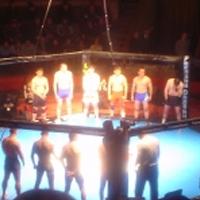 Ринг для боев без правил