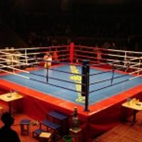 Ринг на подиуме 1м