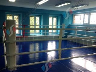 Ринг боксерский 6м*6м РН2