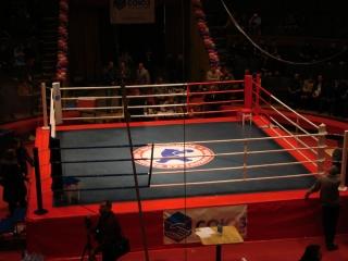Ринг боксерский Kick BOX1