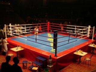 Ринг боксерский Kick BOX2
