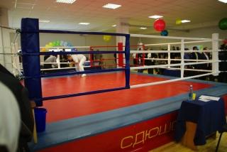 Ринг боксерский ThaiBOX1