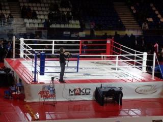 Ринг боксерский 8*8м olimpic plus
