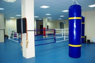 Мешок боксерский Диаметр 0,30 * 1,5м