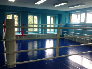 Ринг боксерский 5*5м РН1