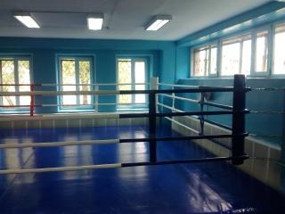 Ринг боксерский 7м*7м РН3