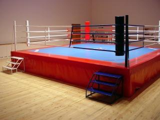 Ринг боксерский 7,62м*7,62м  olimpic